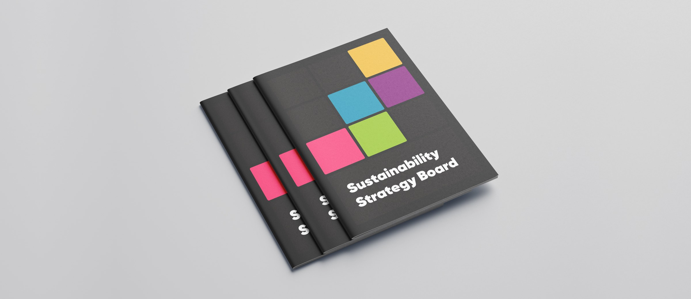 Sustainability Strategy Board Instructions Mockup